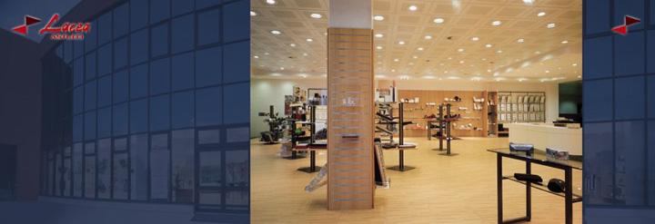 Azienda lacea-azienda_1_1.jpg (Art. corrente, Pag. 1, Foto normale)